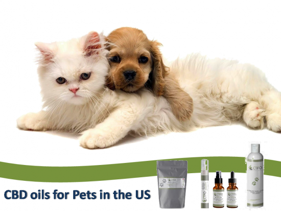 CBD Infused Wonderful Products for Your Pets